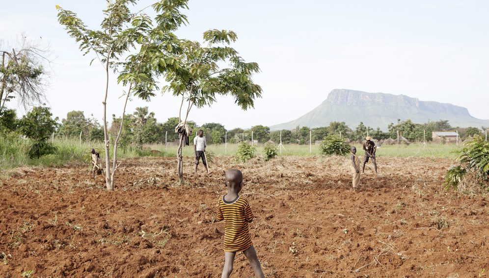 Lorengechora, Karamoja (Uganda). The field outside the health centre. Karimojong people are a Nilotic ethnicity of the plains, who emigrated from Ethiopia in the 18th century.