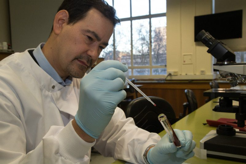 Researcher Matthew Yeo places the gut contents of a Chagas spreading insect in a test tube for DNA analysis. This can be used to ascertain the particular strain of parasite the insect carries, to assess if it is particularly susceptible to drugs
