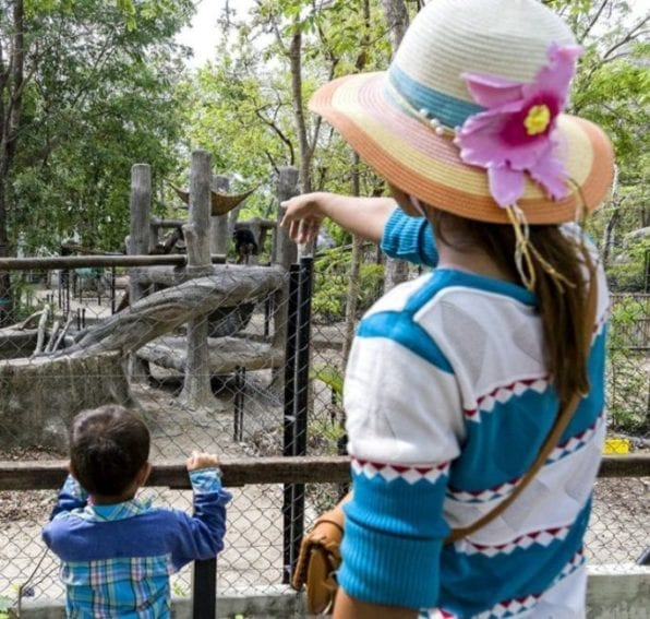 Each year more than 300,000 visitors, from Cambodia and abroad, come to visit the sanctuary. Many of them are schoolchildren, who take part in educational tours and classes.