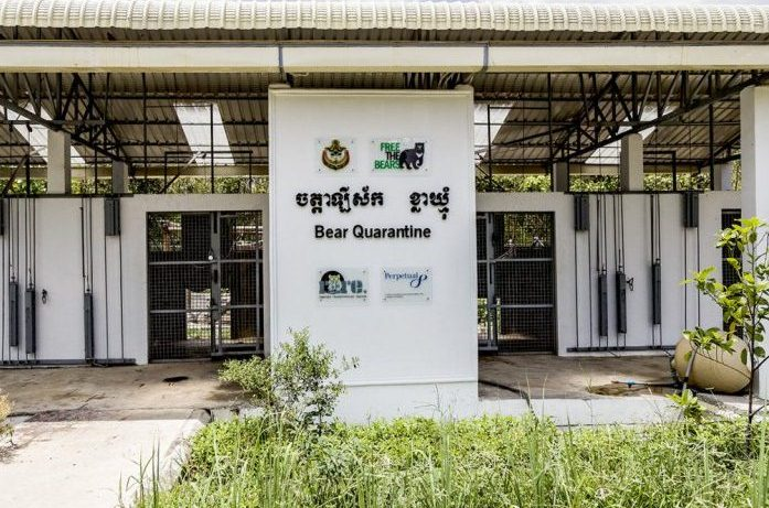 The quarantine area, where the new arrivals are kept for up to three months in order to protect the other bears' health.