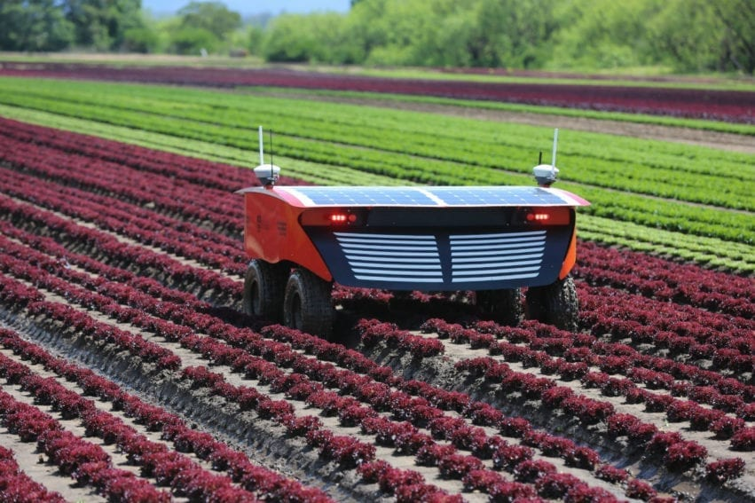 RIPPA, a solar-power driven electric robot was designed for long hours in the field. Best on a vegetable farm, it has a collection of sensors to monitor plant health and growth and can scan for pests. It carries a collection of robotic subsystems for mechanical weeding, precision spraying, soil sampling, and foreign object removal.