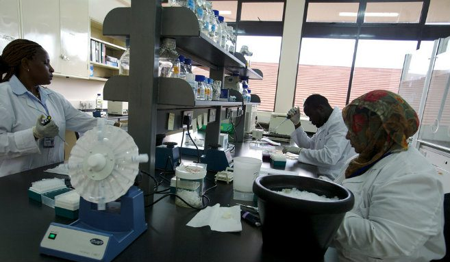 Africa food security research 5