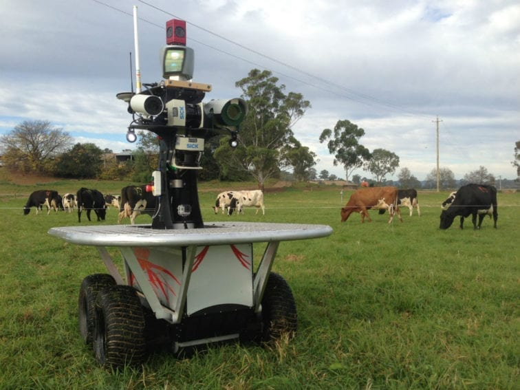 Here the robot called Shrimp was deployed to see how cattle would respond to its presence. As the photo shows, the cows did not mind Shrimp sharing their field, allowing the farmer to monitor them up close. In the future, the robot will also measure pasture quality – a prerequisite for a healthy herd and for cows to produce quality milk