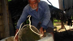 Bioenergy and food security need linked policy, says UN