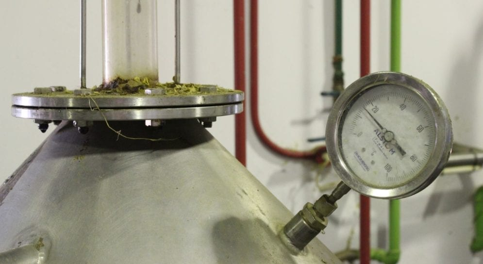 """In its Paarl distillery, the company uses a patented extraction system. """"Science gives us the ability to add value"""" to the plant's properties, says Stander. This, along with indigenous knowledge of these properties, enables the company to bring in revenue"""