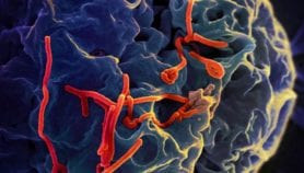 Ebola vaccine arrives in Liberia for large-scale trial