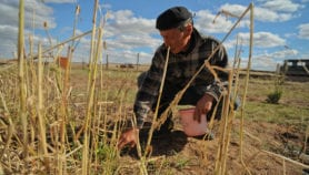 Poorly designed climate mitigation plans 'could increase hunger'