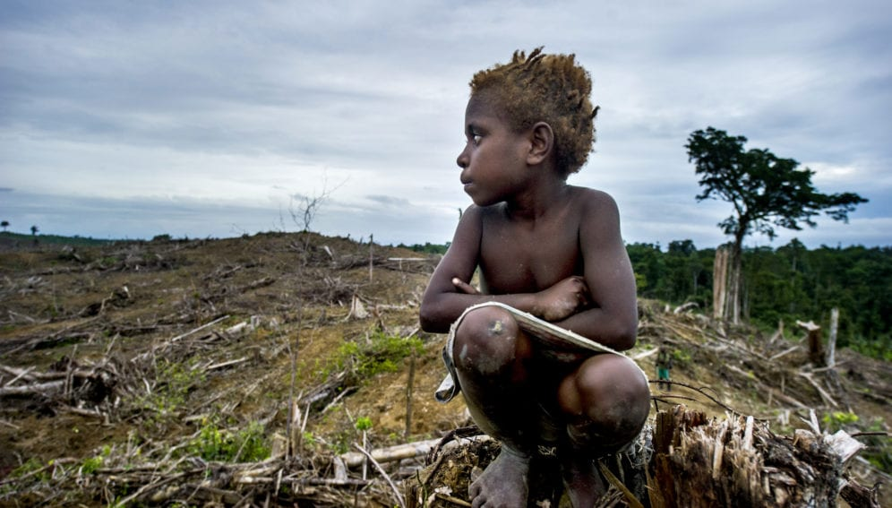 indigenous child in deforested land
