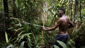 Mixing science and traditional knowledge in forestry