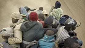Focus on Migration: Rising migration is a myth