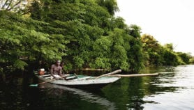 Climate action held back by conflicting policy in African countries