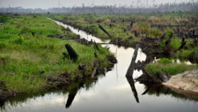 Conserving one of the least understood ecosystems