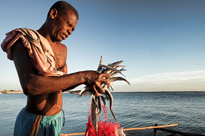 Until about ten years ago a fisherman could earn 6 to 20 dollars per day, villagers from the Velondriake community have said. But stocks have now collapsed, and fishing is worth 1-2 dollars per day. Aquaculture could be a solution to making a living based on marine resources.