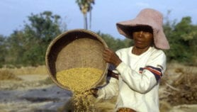 Asia-Pacific Analysis: Asia's invisible women farmers