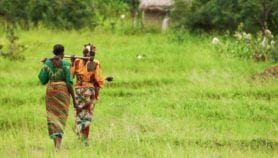 Women are 'key drivers' in climate change adaptation