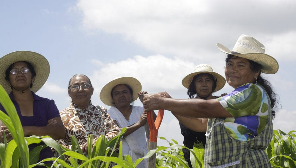 tending_crops_in_mexico_flickr_oxfam_1024x683