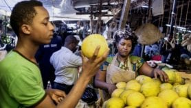 WHO reveals scale of foodborne disease