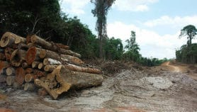 Brazil on track for costly failure on climate targets