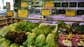 High cost of healthy food to blame for malnutrition