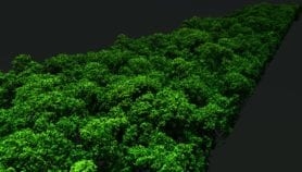 LiDAR maps carbon emissions from Amazon deforestation