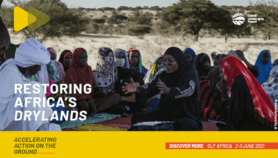 GLF Africa: Restoring Africa's Drylands – Accelerating Action from the Ground Up