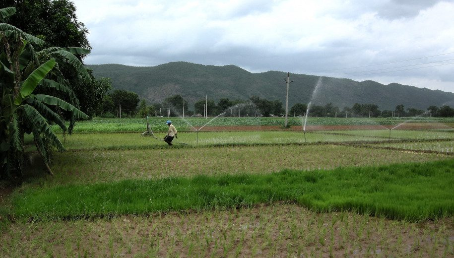 groundwater-based irrigation in India