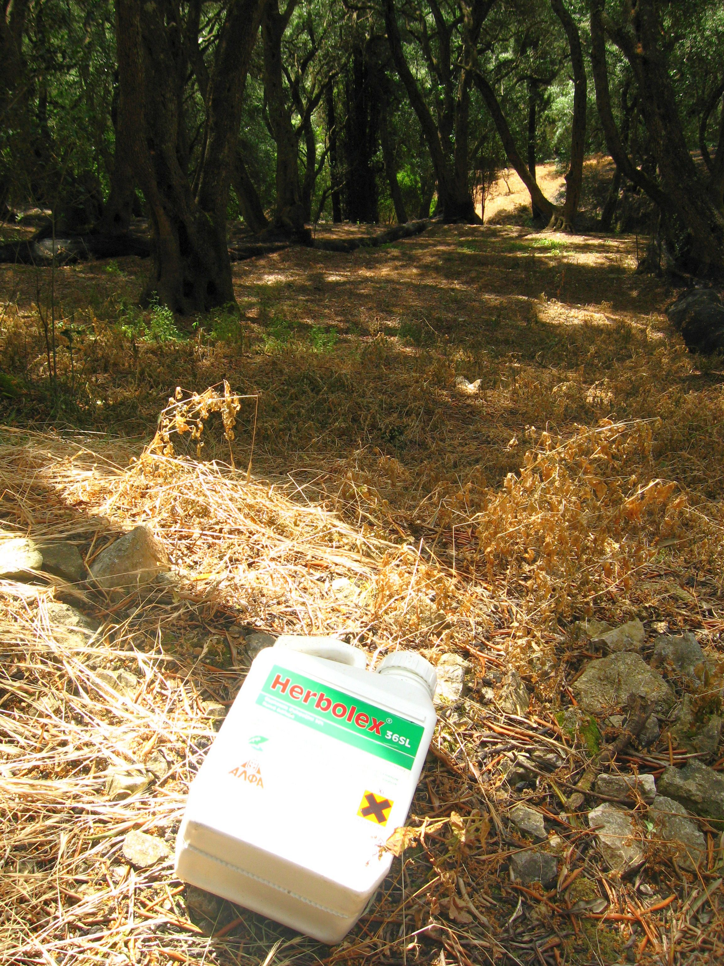 Empty_Glyphosate_(Herbolex)_container_discarded_in_Corfu_olive_grove