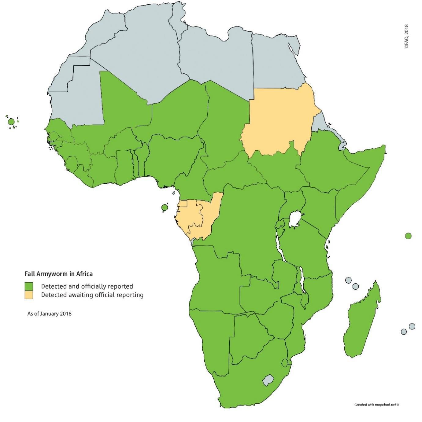 Map of areas affected by Fall Armyworm (as of January 2018)