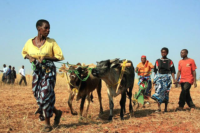 Farming Women Agriculture