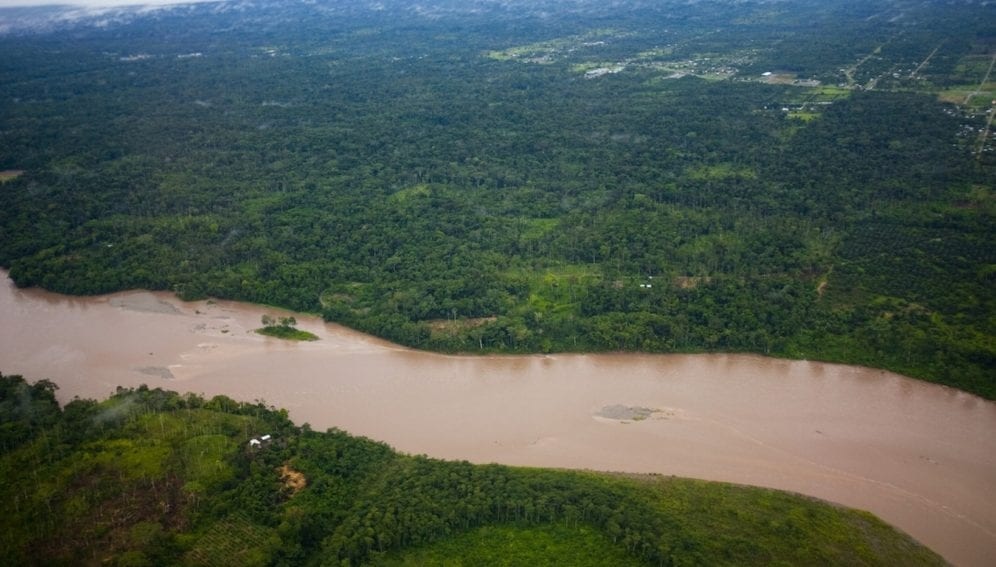 Amazonia-by Rainforest Action Network
