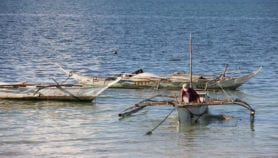 Philippine fish catches may dip from ocean warming