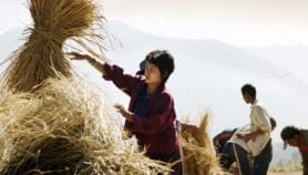 Bhutanese farmers rank yield as top measure for soil fertility