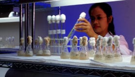 South-East Asia puts gene editing on the agenda
