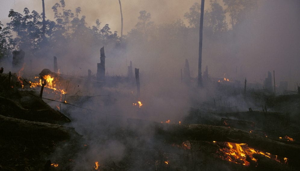 forest_fire_indonesia_Paul_Lowe_Panos