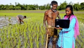 Q&A: Science is still biased towards staple crops