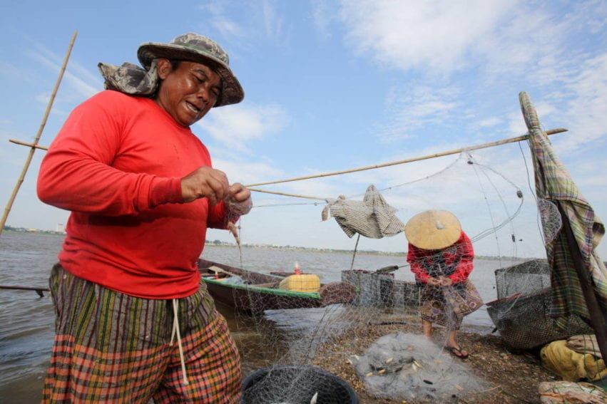 The Mekong is a highly productive inland fishery: millions of people get all their protein from fish caught in the river. But there are fears that damming the river will significantly reduce fish stocks