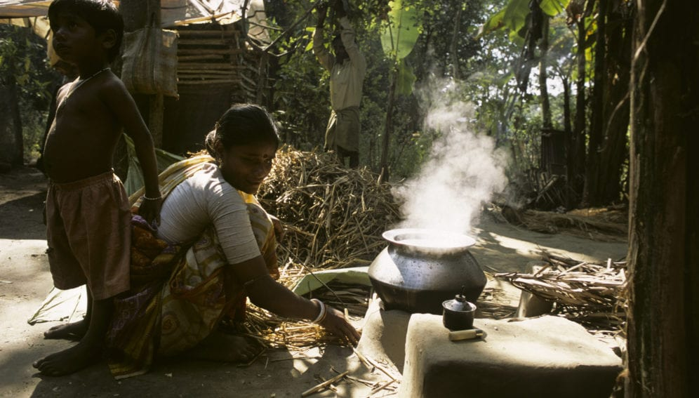 Shift to biogas helps revive forests_panos