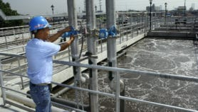 Algae can produce biofuels from wastewater