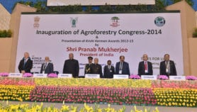 India's new agro-forestry policy is pro-farmer