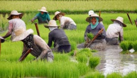 'Climate-smart agriculture must address poverty'