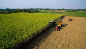'Disruptive technologies' transform Asian agriculture