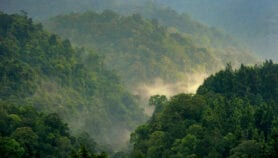 South-East Asia climate goals in doubt as upland clearing accelerates