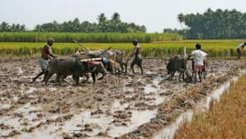 How food production emissions are harming health