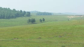Grasslands turning from carbon sinks to emitters
