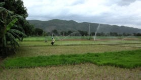 Groundwater depletion in India 'threatens food security'