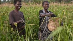 New programme to boost incomes of smallholders launched
