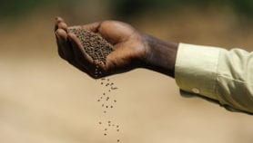 Investing in people and evidence for sustainable farming