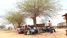 Smallholders team up to confront climate change impacts