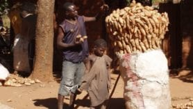 African policy to end hunger silent on climate risk