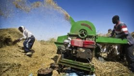 Africa gets new centre for agricultural innovation